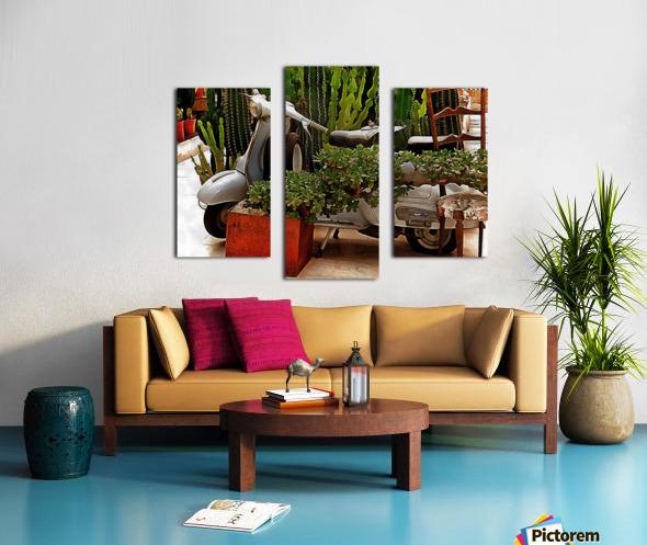 Vespa As Part Of Succulent Display Canvas print