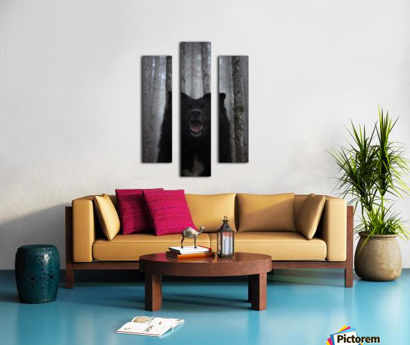 Home in forest  Canvas print