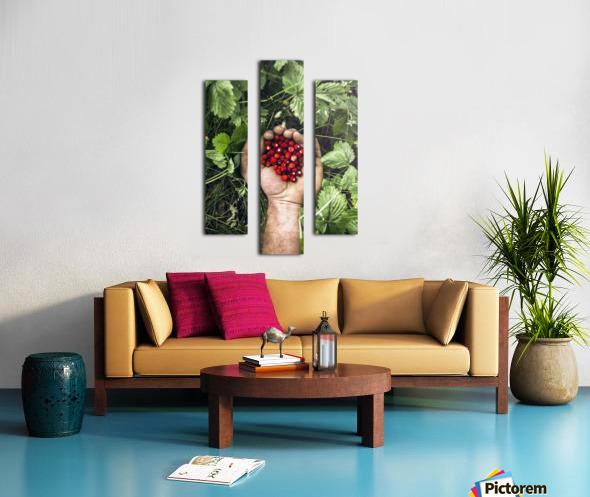Take it  Canvas print