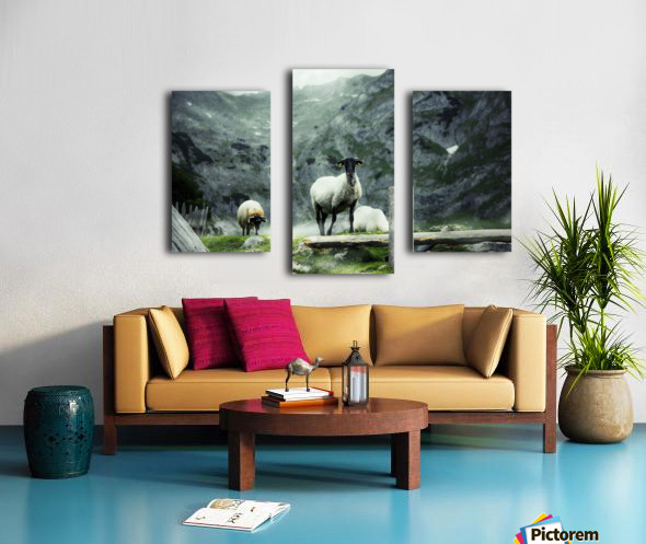 Our white Canvas print