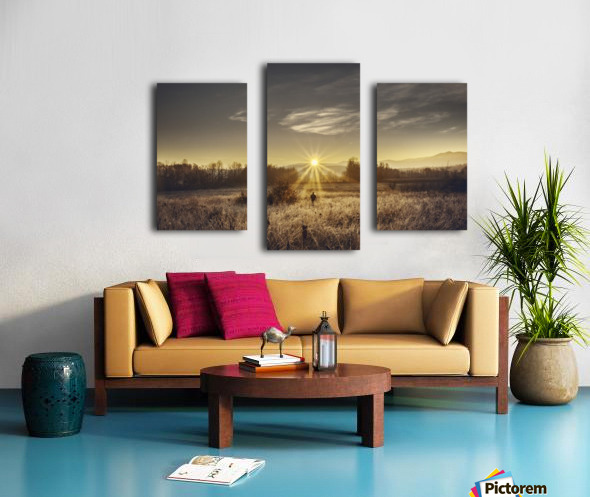 Zen morning Canvas print