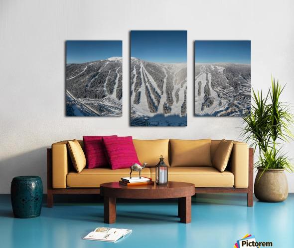 Groomer s Choice Canvas print