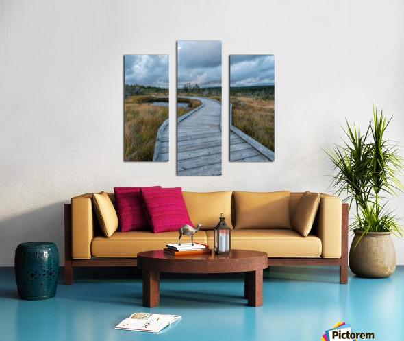 Autumn Walk - 2 Canvas print