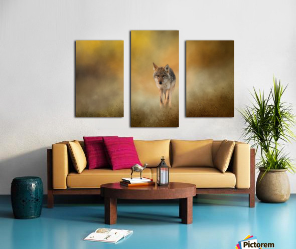 Strolling Coyote Canvas print