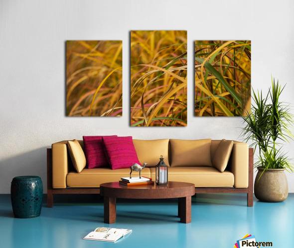 FLAMBOYANTES GRAMINEES NO. 1 - FLAMBOYANT GRASSES NO. 1 Impression sur toile