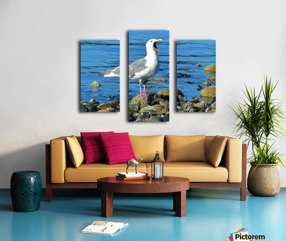 Yawning Gull Canvas print
