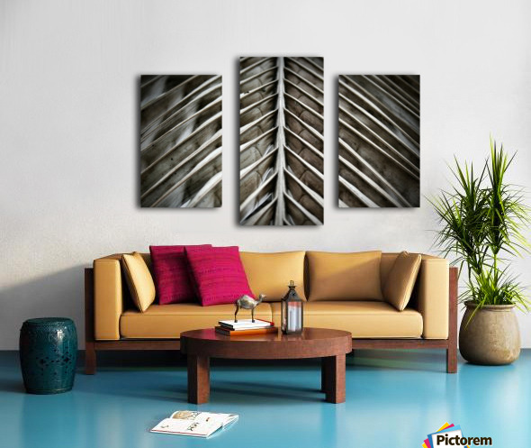 Nature - 16 Canvas print