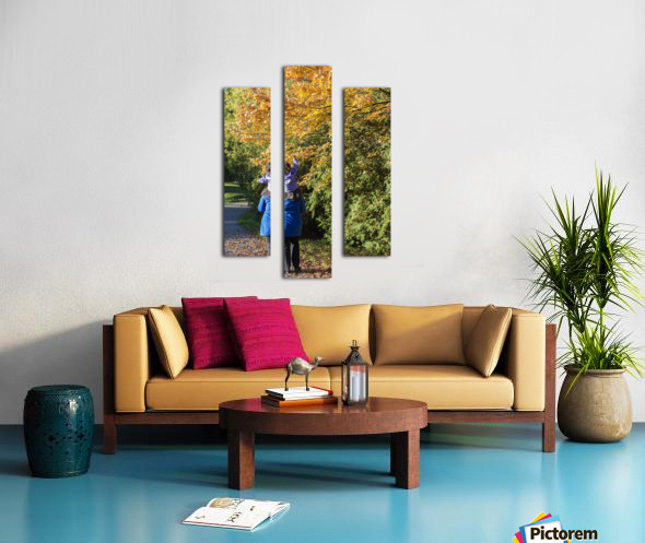 Getting a Boost Canvas print
