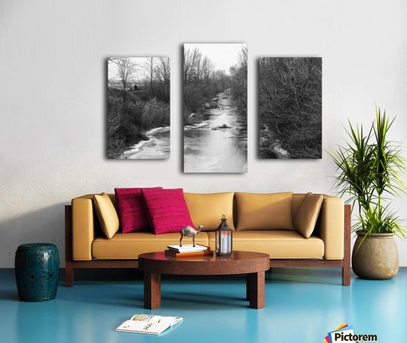 Frozen Wetlands Canvas print