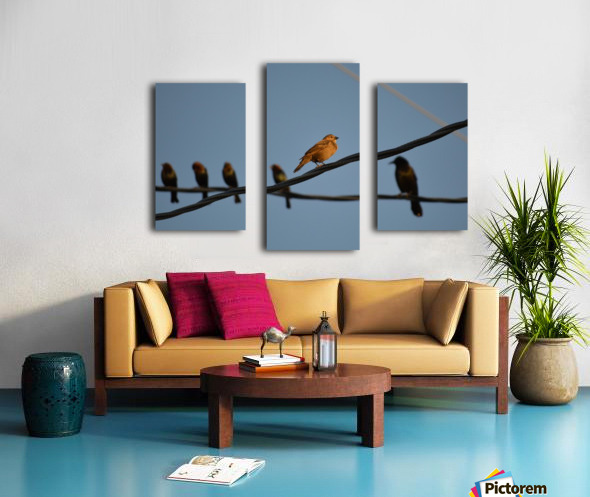 Birds on the Wires Canvas print