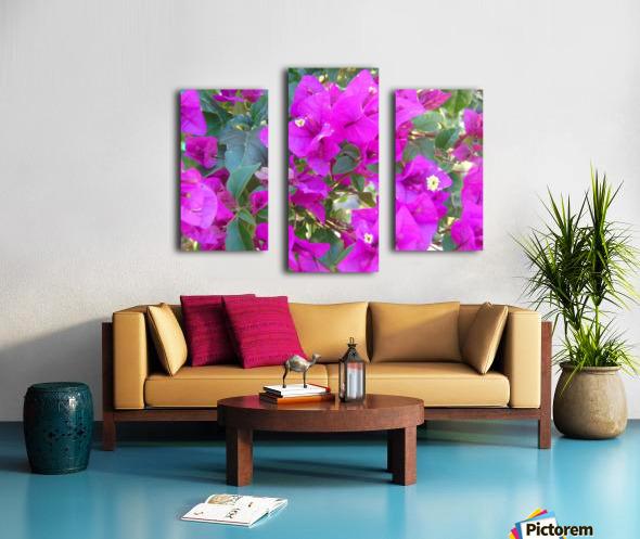 Purple Fusion Canvas print
