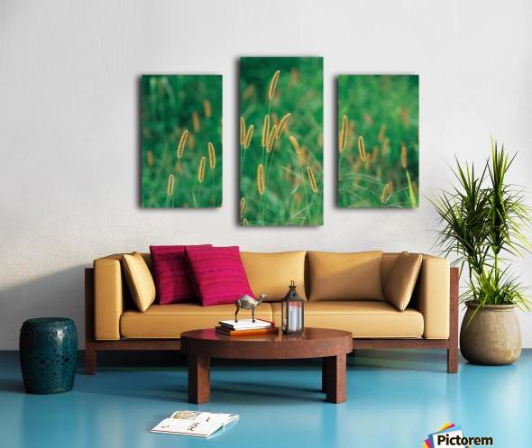 landscape_2_0157 Canvas print