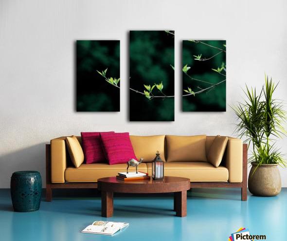 landscape_2_0163 Canvas print
