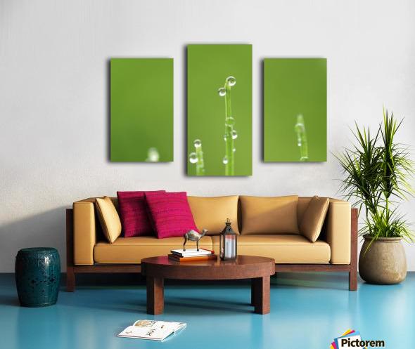 landscape_2_0986 Canvas print