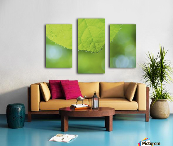 landscape_2_0988 Canvas print