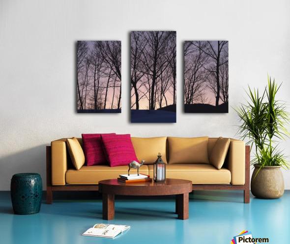 landscape_2_1031 Canvas print