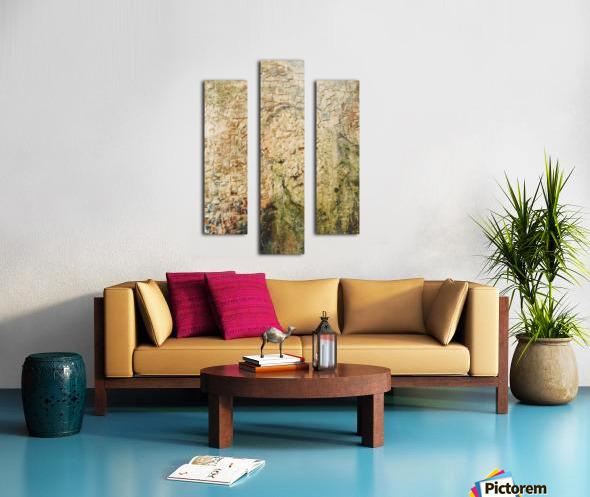 Immemorial Canvas print