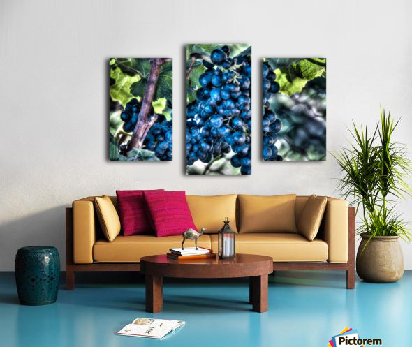 Bunches of Grapes Canvas print