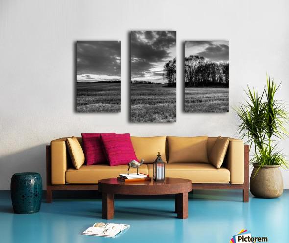 After Prairie Harvest Canvas print