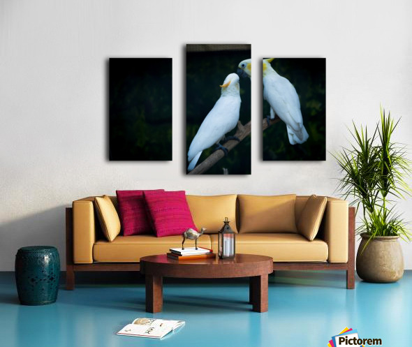 Nature and Birds   15 Canvas print