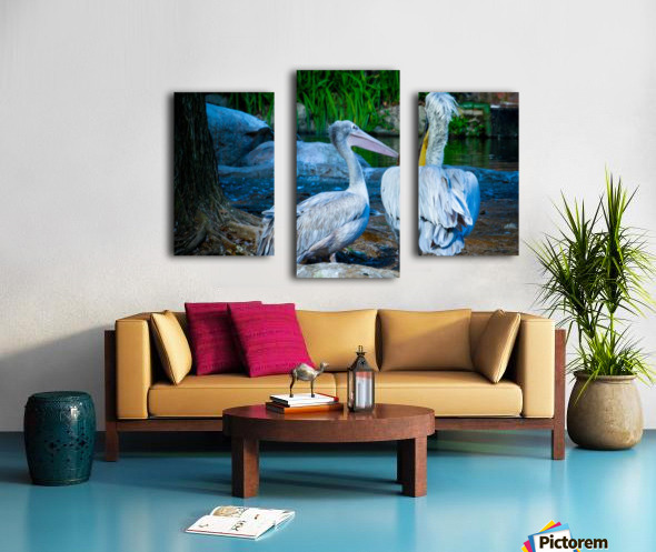 Nature and Birds   9 Canvas print