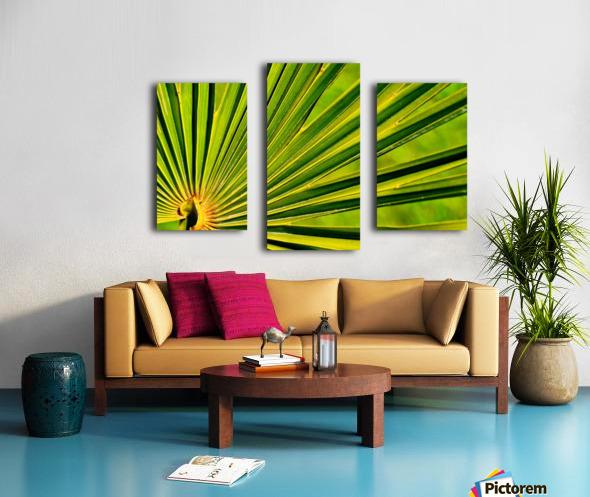 PALM-TREE LEAF 1 Canvas print