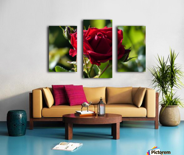 Sterling Canvas print