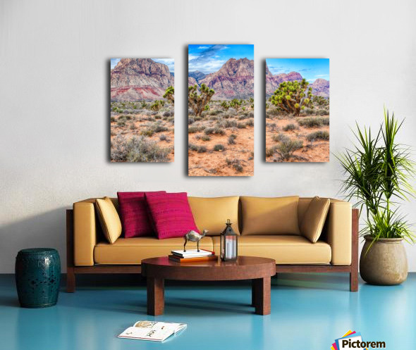 JoshuaTree Canvas print