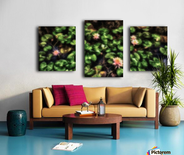 Lillypad Canvas print