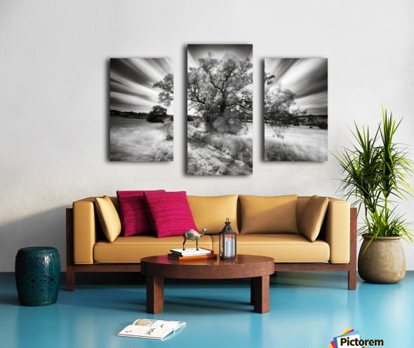 Keeper of the light Canvas print