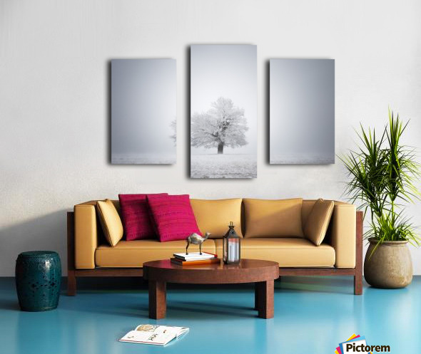 White solitude and light Canvas print