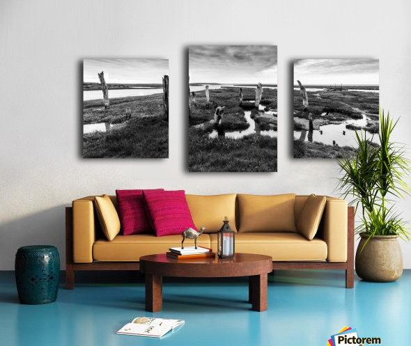 Coastal Marshland Canvas print