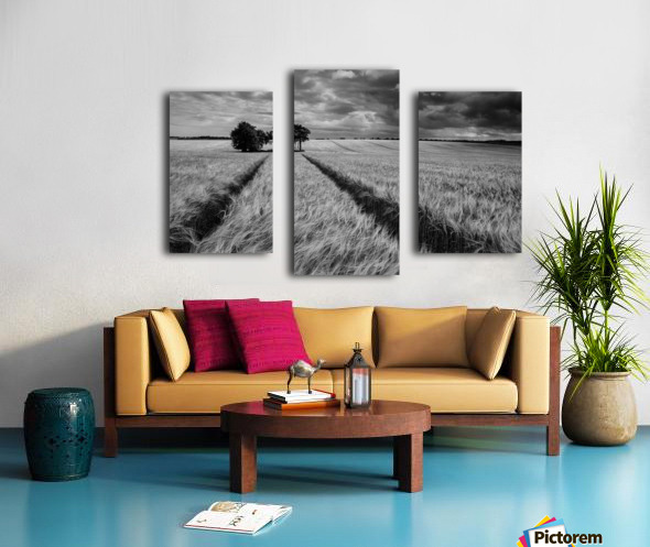 Field Shapes 2 Canvas print