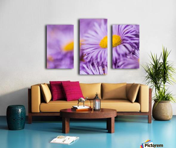 Beautiful summer background Canvas print