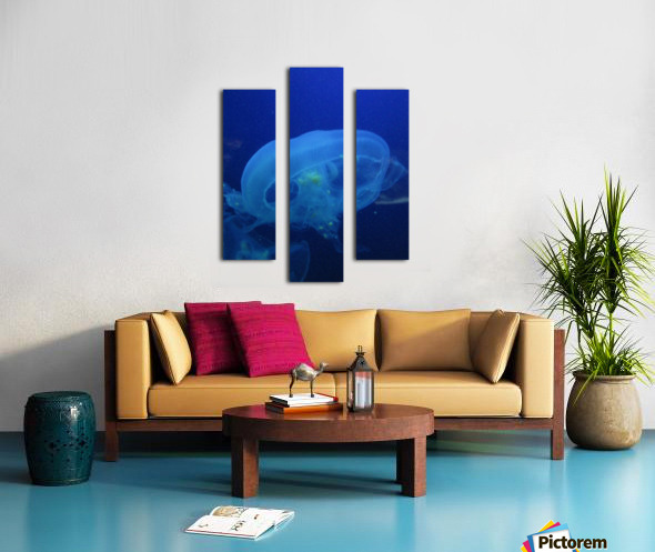 Moon Jelly Canvas print