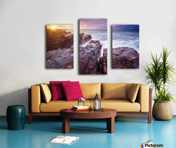 Featherweight Canvas print