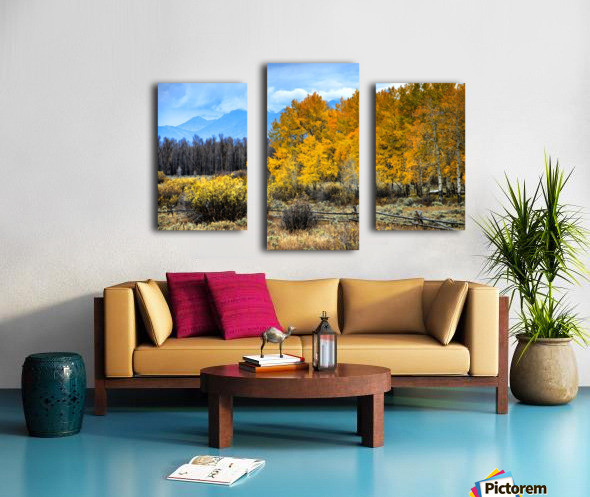 Fall Holdouts in Jackson Hole Canvas print
