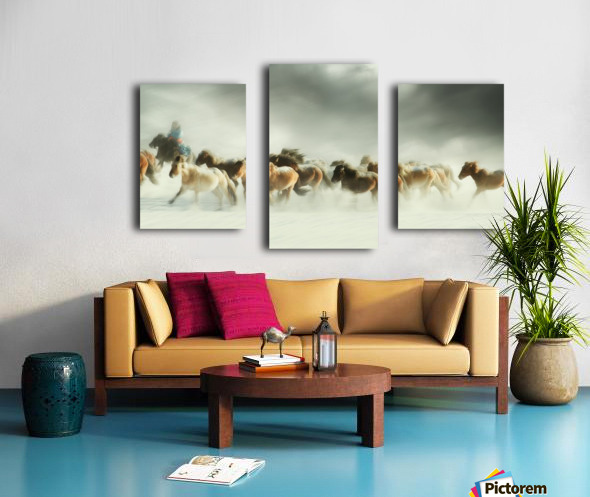 Horses gallop Canvas print
