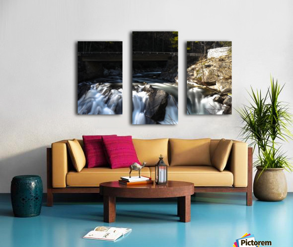 P1240623 Canvas print