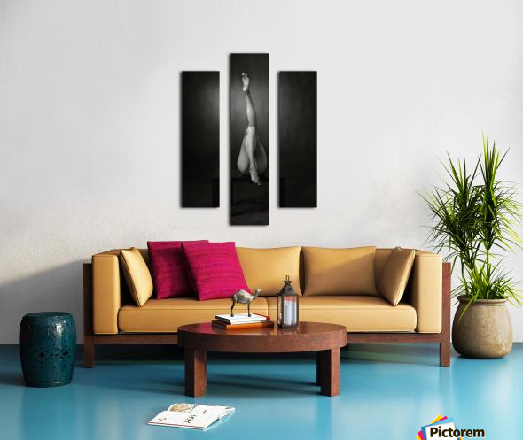 One Up, One Down Canvas print