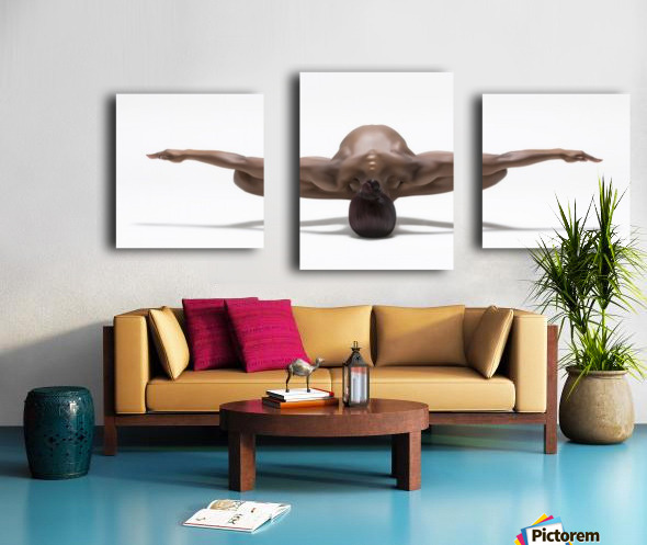 Perfect Balance Canvas print