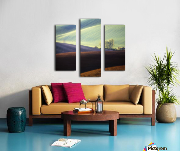Fields... Canvas print