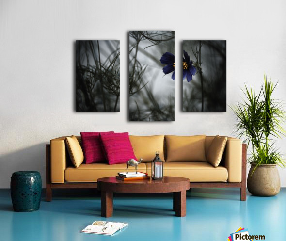 When Cosmos will be blue Canvas print