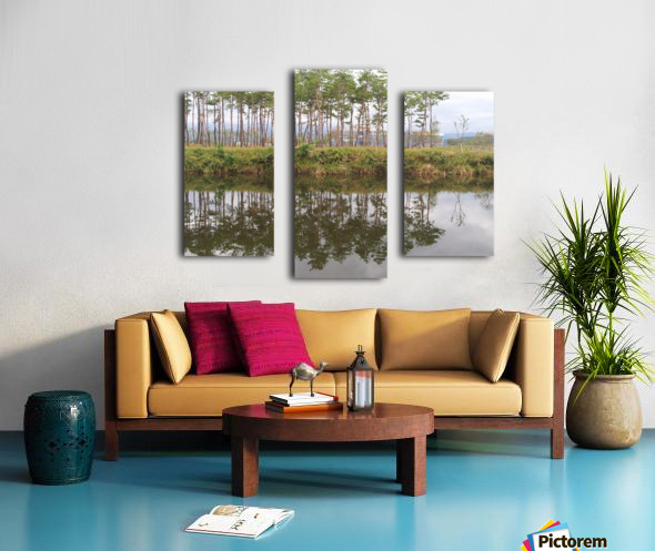 Sky, Water & Trees Canvas print