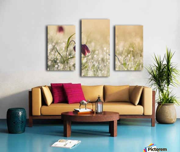 Morningdew Canvas print
