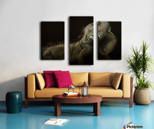 Iguana profile Canvas print