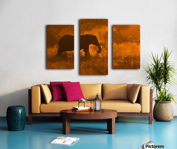 Golden Elephant in Savute Canvas print