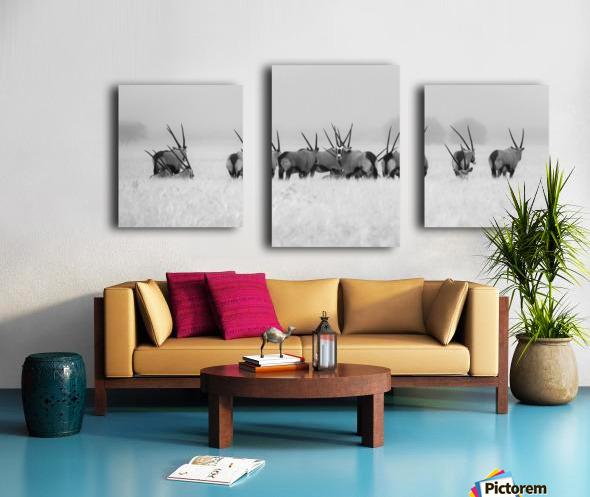 Oryx in the rain Canvas print