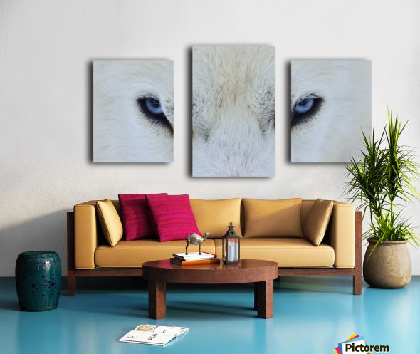Mirada azul Canvas print