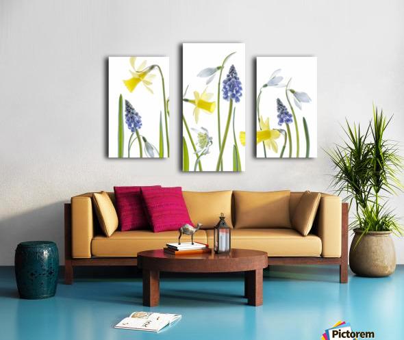 Spring Canvas print